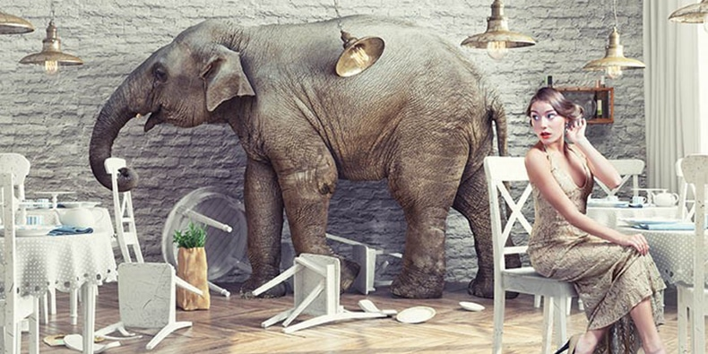 elephant trampling through restaurant with worried woman at table